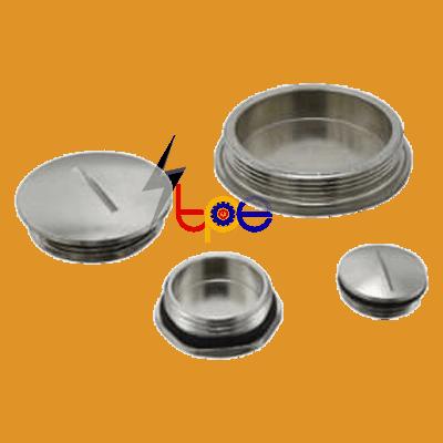 ปลั๊กอุดเกลียวโลหะ (Metal Plug Cap)