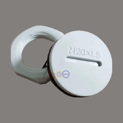 ปลั๊กอุดเกลียว พลาสติก (Plastic Plug Cap)
